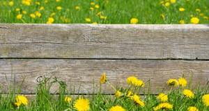 Holz im Außenbereich - Schutz vor Witterung und Schädlingen