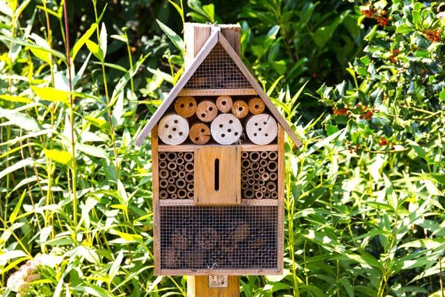 Insektenhotel selber bauen - Anleitung