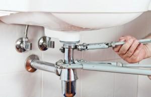 Siphon reinigen - So einfach geht's