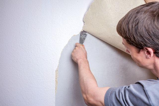 alte tapeten entfernen so geht 39 s leichter. Black Bedroom Furniture Sets. Home Design Ideas
