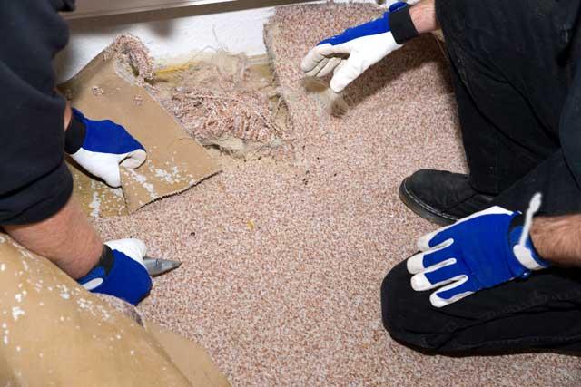 Teppichboden Entfernen In Nur 5 Schritten Restlos Gelöst Heimwerkertricks