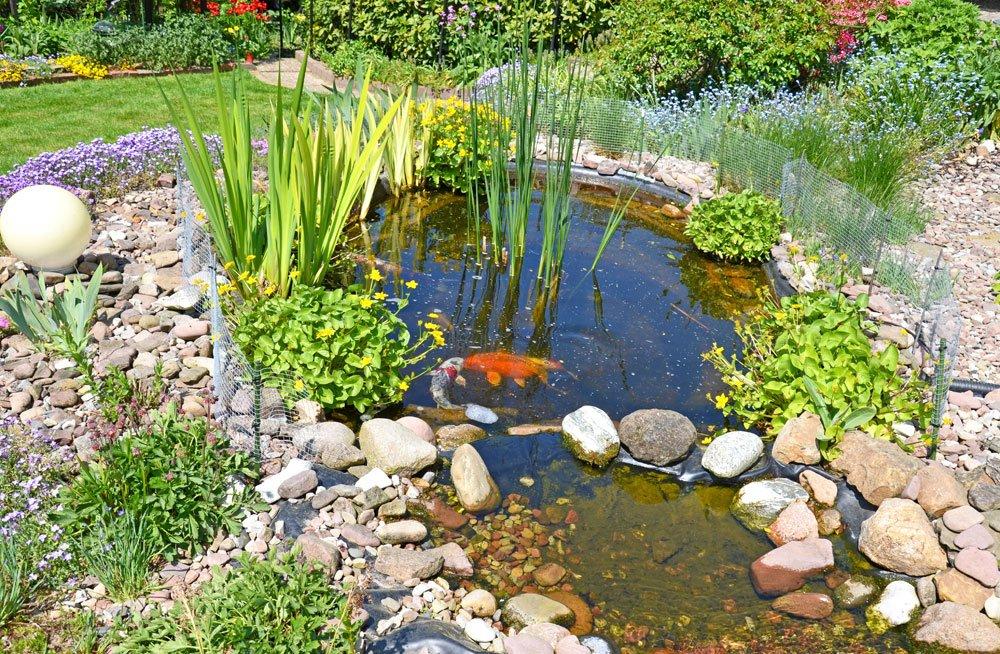 Gartenteich Zaun