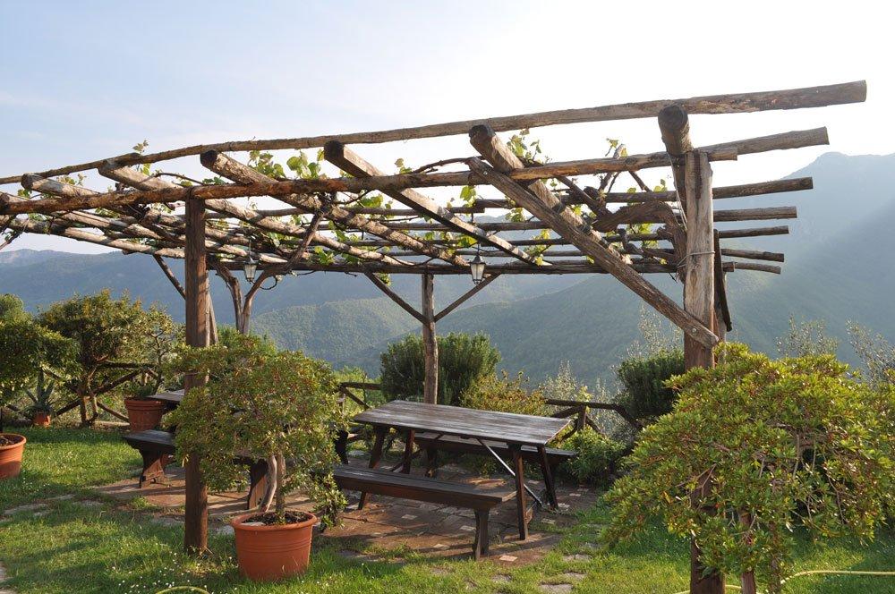 Weinlaube bauen anleitung und tipps for Weintrauben im garten anbauen
