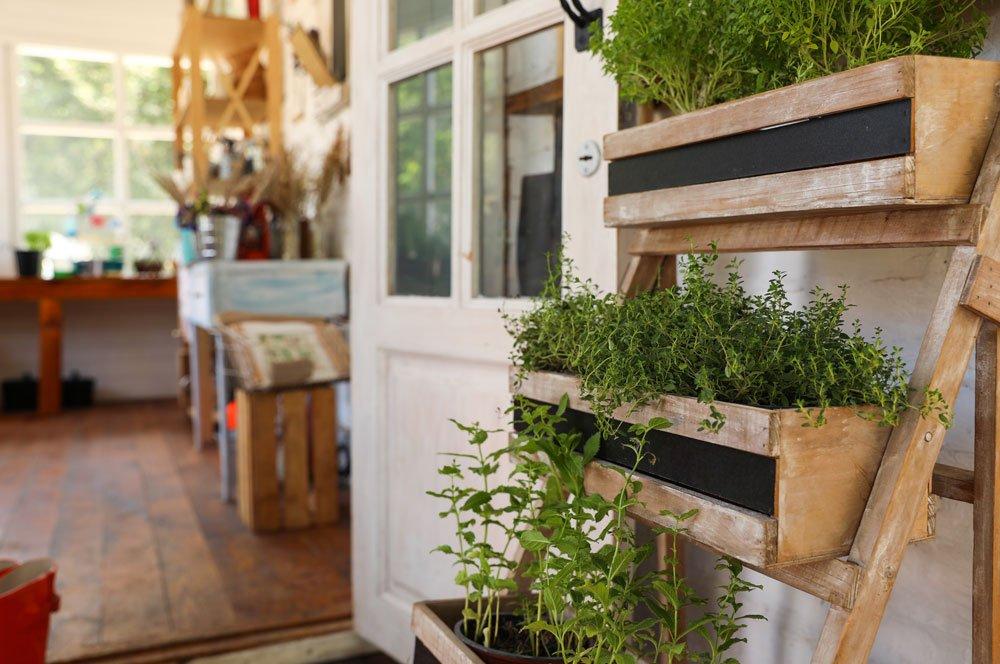 Pflanztreppe mit Kräutern auf dem Balkon