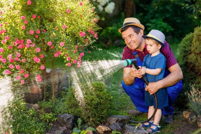 Opa und Enkel gießen Blumen