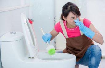 Toilette stinkt trotz Putzen