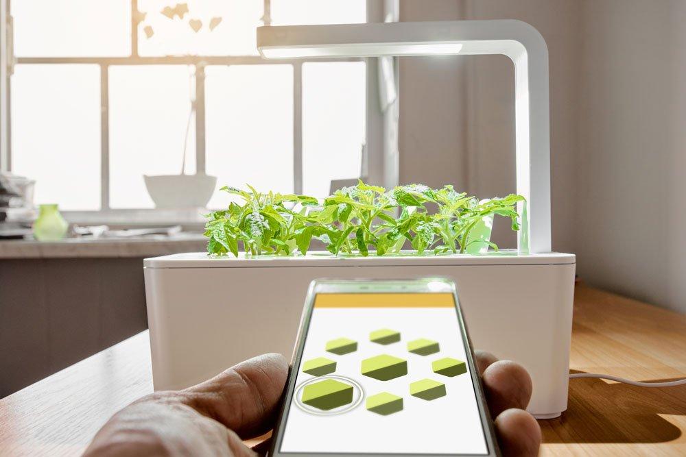 Elektrischer Indoor Garden