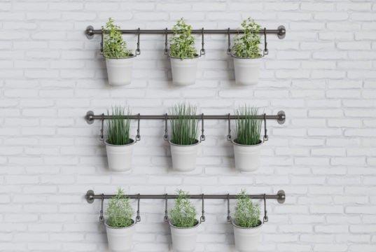 Indoor Gardening