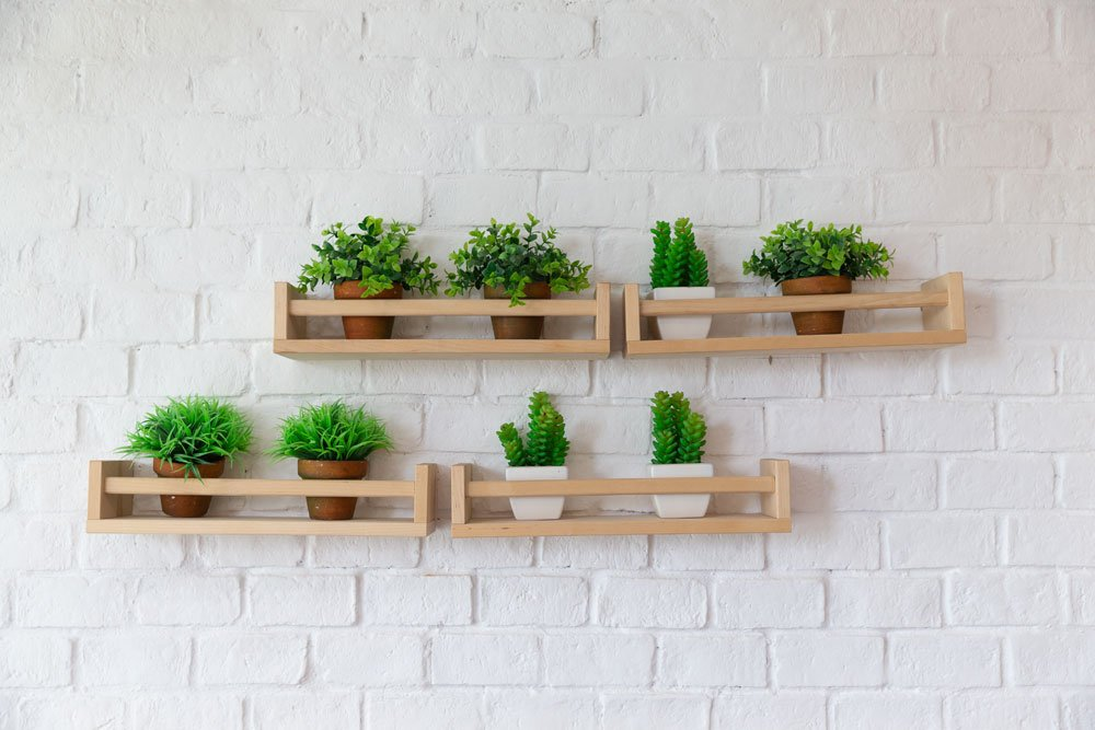 Pflanzen auf dem Wandregal